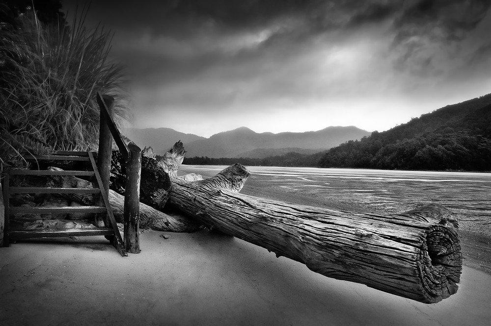 Black and white landscape, with stormy skies, a log and a wooden staircase, taken on the Abel Tasman track