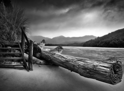 Processing Black and White Landscape Photos in Lightroom