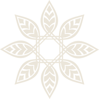 Symbol only PNG transparent for website.