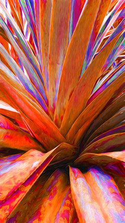 Plant liquid lines - organes