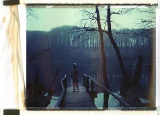 Bastian Kalous Photography