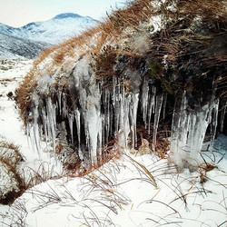 Tresure hunting for crystal icicles_#win