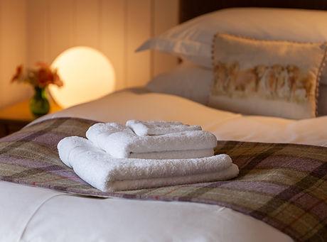 Dionard_Towels_9268_WEB_Med.jpg