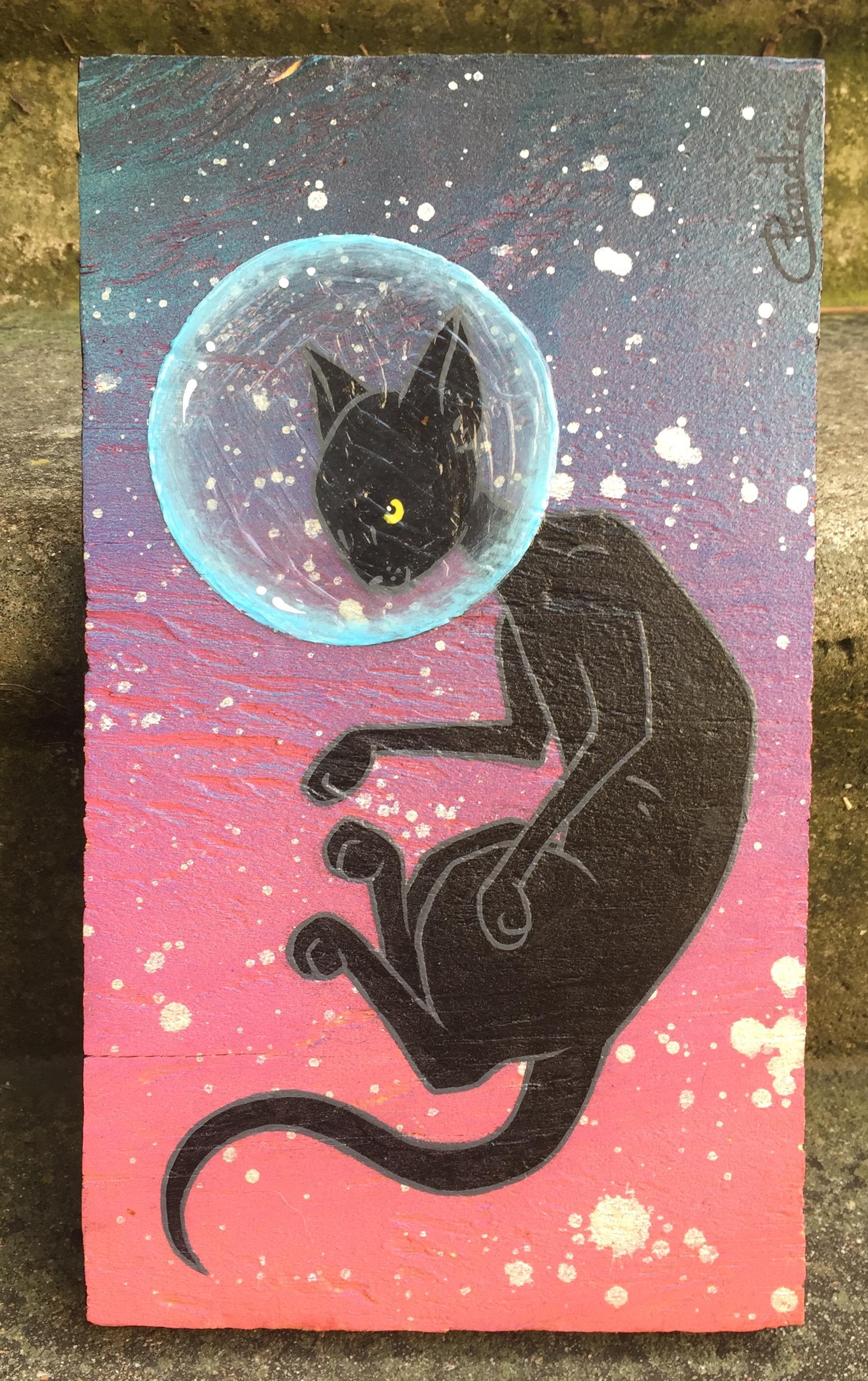 Space Catdet