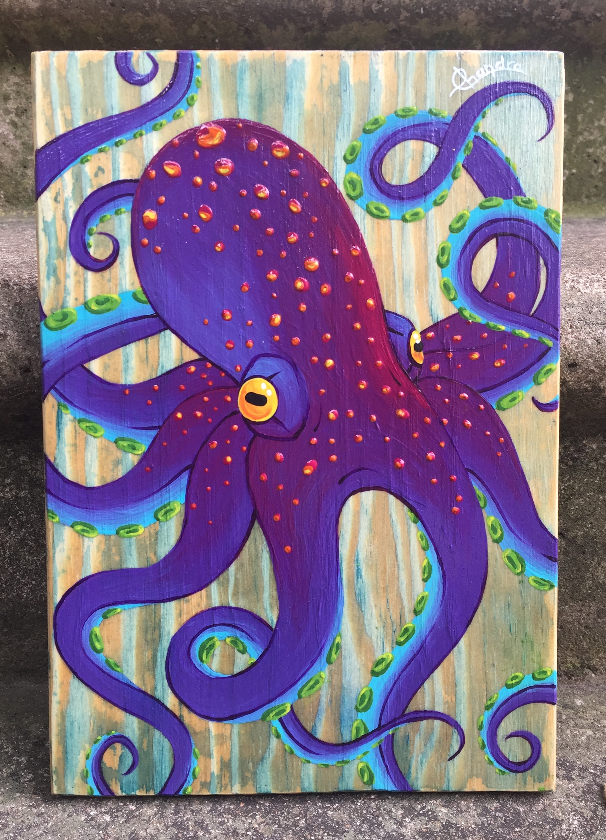 Octopussoir