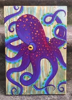 Octopussoir