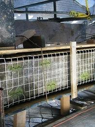 299-Park-beam-ready-for-concrete-pour-WE