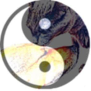 Romes Paws Logo Yin Yang.png