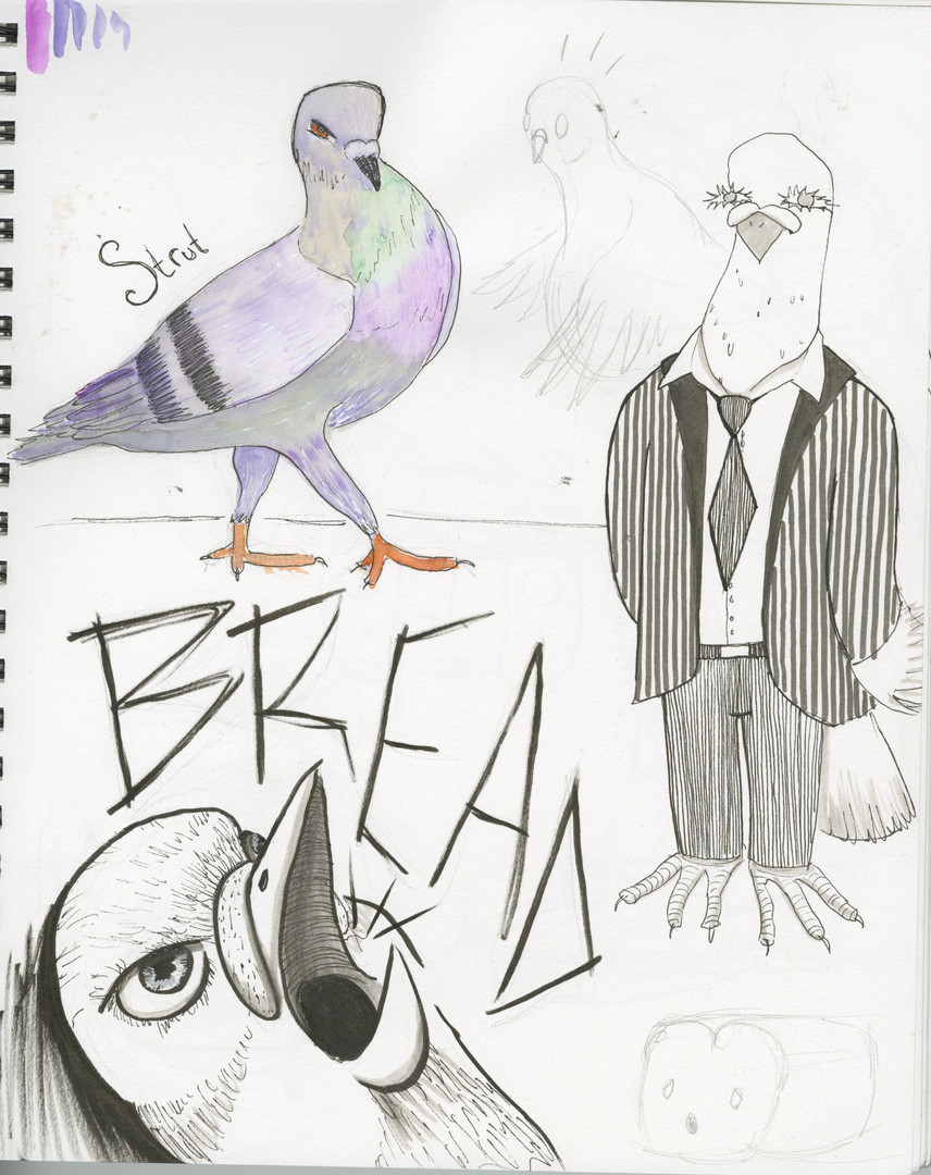 Pigeon page