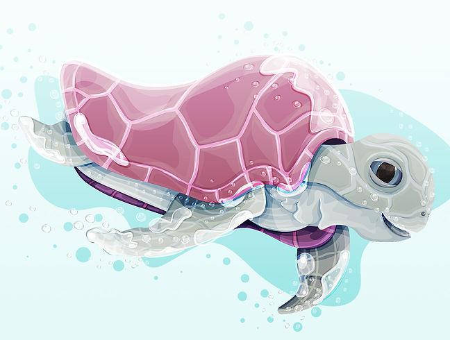 NickCann_Turtle.jpg