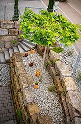 Lichthof/Natursteinmauer/Hochstamm