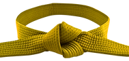 yellow0.png