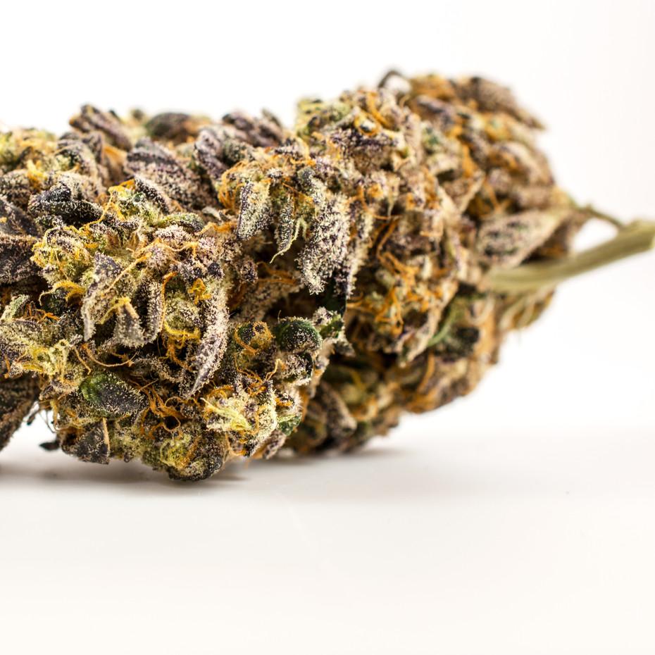 cannabis_web_smaller.jpg