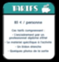 Tarifs et conditions du Canyon d'envergure d'Un jour en Montagne dans les Pyrénées Atlantiques.
