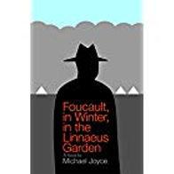 Foucault thumb.jpg