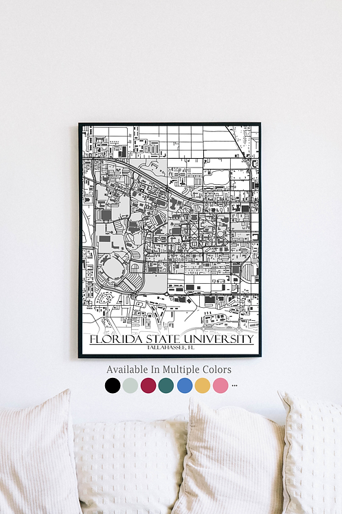 Print of Florida State University and all its roads