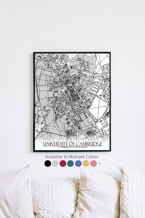 Print of Cambridge University and all its roads