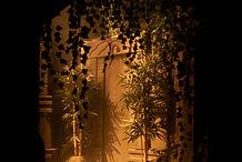 La Jungle - GG Escape Game Paris