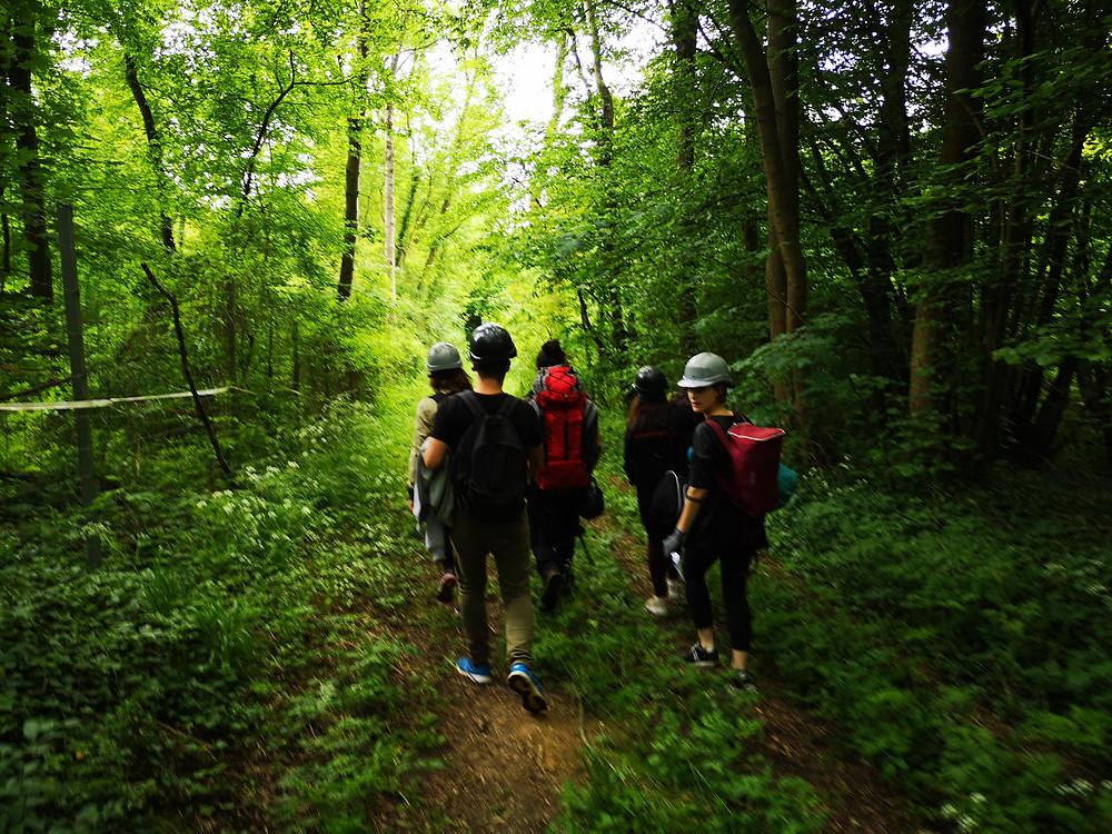Escape Forest - Bois de Rosoy