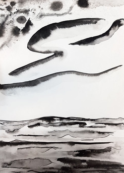 Michael Terkildsen's work