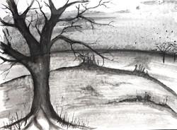 Inge Terkildsen's work