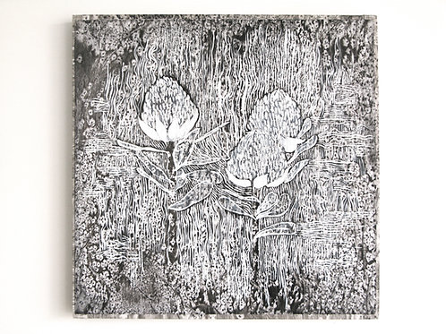 Banksia (after Arles)