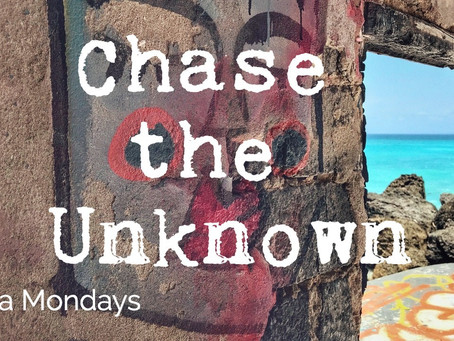 Chase the Unknown