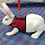 Thumbnail: Small Pet Mesh Harness