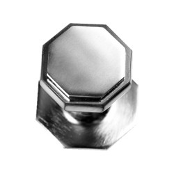 Door Knob in satin chrome