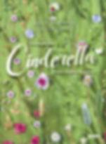 Cinderella-DVD-Staatsoper.jpg