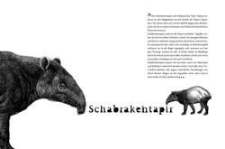 FFR Schabrakentapier