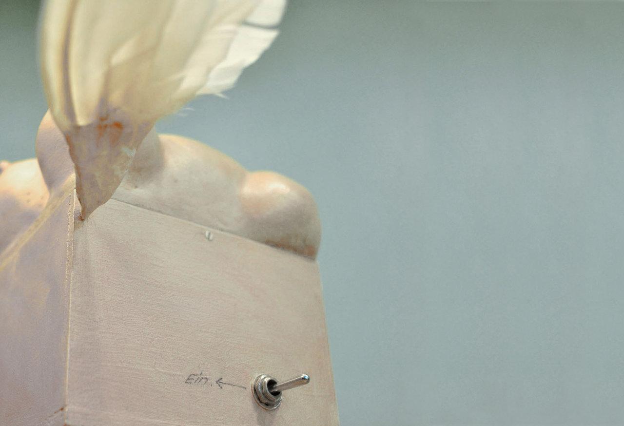 Fluegelmutter-1.jpg