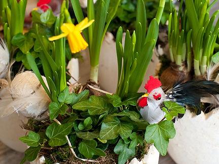 Belflor Blumen Luzern, Ostern, Frühling, Tulpen, Rosen, Blumenstrauss