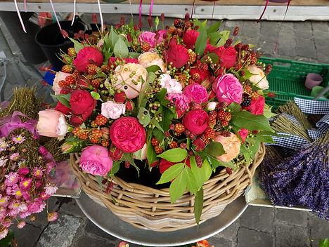 Belflor Blumen Luzern Sommer.jpg