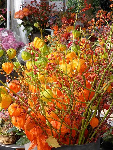 Belflor Blumen Luzern Herbst
