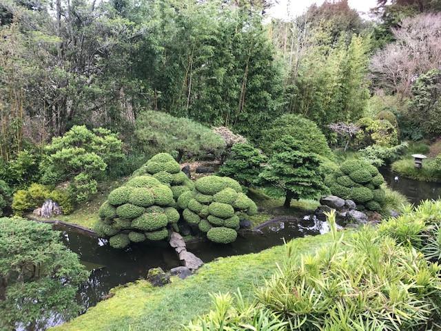 Japanese Tea Garden, San Francisco.JPG