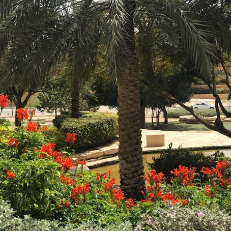 Discover with us Riyadh in Saudi Arabia