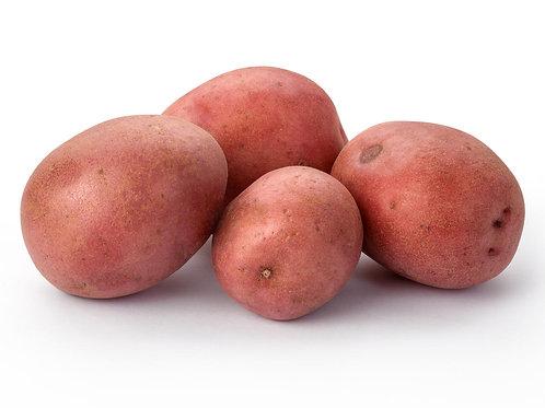 Red Potato (5lb)