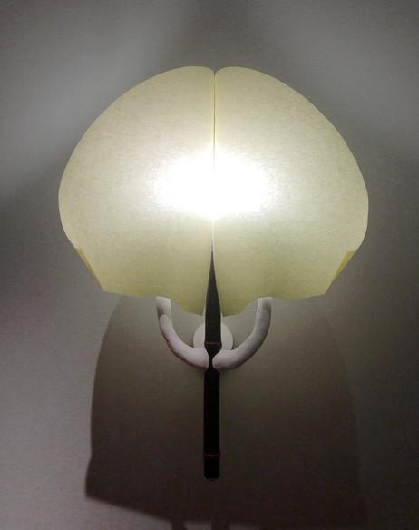 FP_lampe_PLI_03_light.jpg