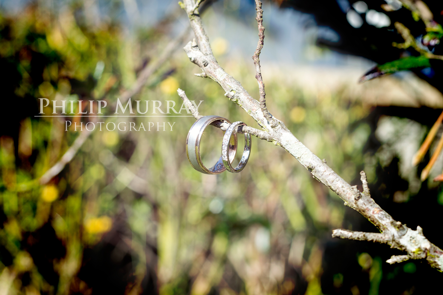 Wedding_E&J_Groom_Rings_Bride_Tree_Branch_Philip_Murray_Photography_Dublin