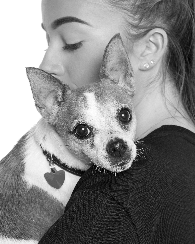 Dog-Girl-Jack-Russel-Black-White-Pet-Philip-Murray-Photography-Dublin