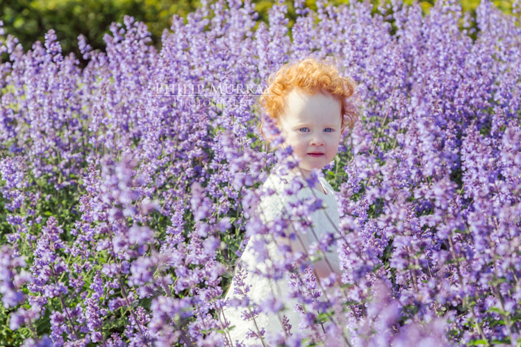 Wedding_S&D_Garden_Purple_Child_Red_Philip_Murray_Photography_Dublin
