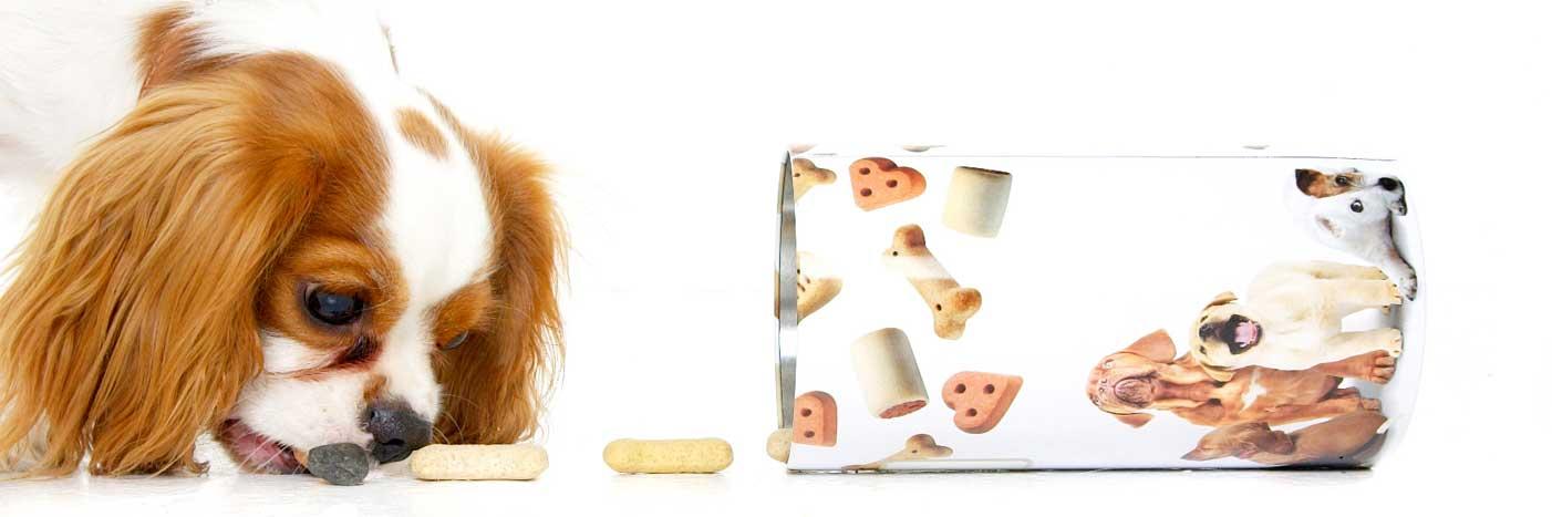 11-Pets-Dog-Treats-Philip-Murray-Photography-Dublin