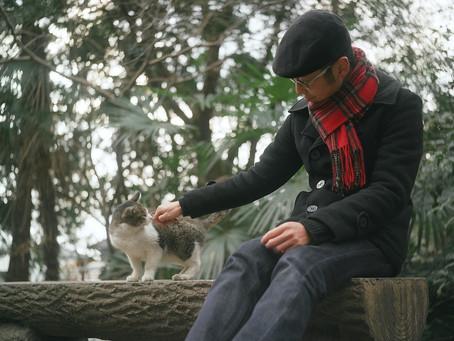 猫が好きなんですよ