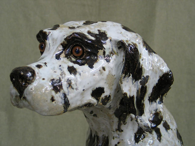 Dalmation sitting head.JPG