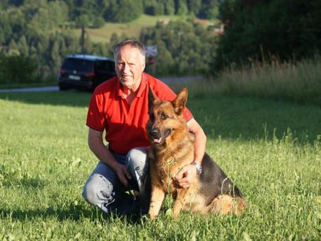 Zeus med najlepšimi nemškimi ovčarji v 2017 v KDNOS
