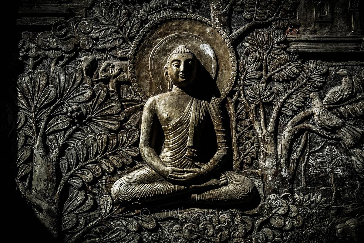 Travel Sri Lanka-13