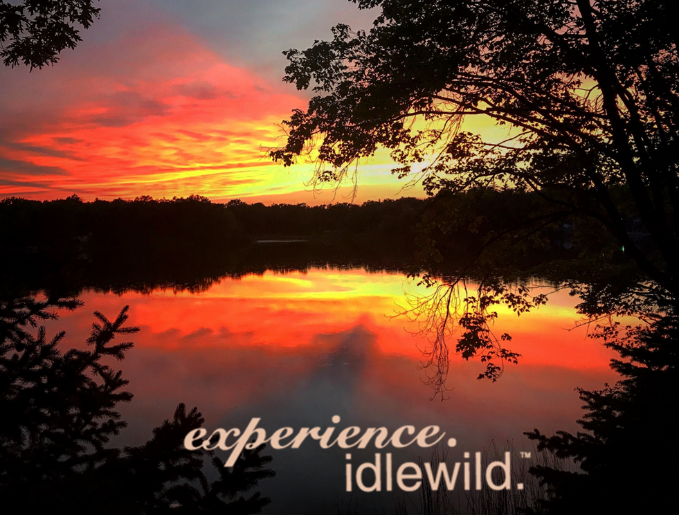 Idlewild_4.png