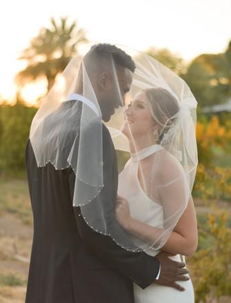 Wedding veil gaze