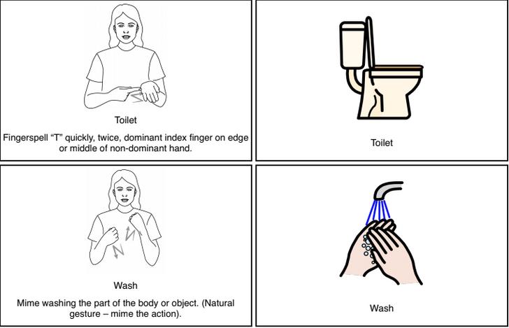 Toilet & Wash